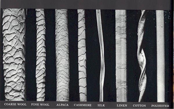 Electron Micrograph Of Natural Fibers